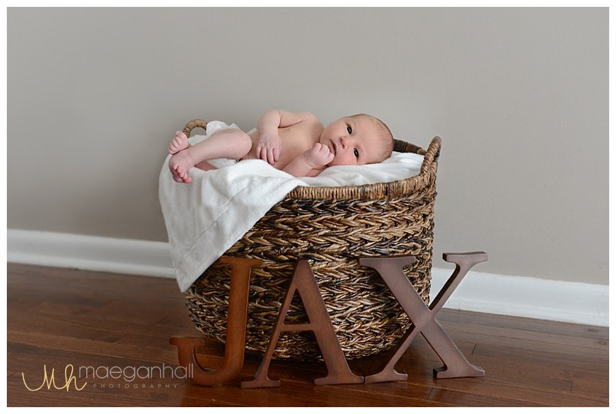 Dunwoody-Woodstock-newborn-baby-photographer-pictures-images_0352